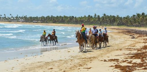Horseback Riding Tour on the Beach